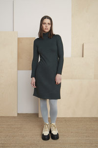 Baxter Turtleneck Dress (5 colors)